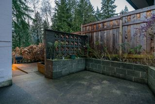 Photo 29: 3737 CALDER Avenue in North Vancouver: Upper Lonsdale House for sale : MLS®# R2233482