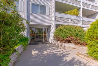 "Photo 16: 310 2055 SUFFOLK Avenue in Port Coquitlam: Glenwood PQ Condo for sale in ""SUFFOLK MANOR"" : MLS®# R2265018"