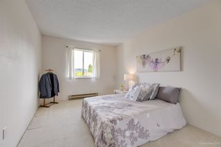 "Photo 10: 310 2055 SUFFOLK Avenue in Port Coquitlam: Glenwood PQ Condo for sale in ""SUFFOLK MANOR"" : MLS®# R2265018"