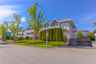 "Photo 17: 310 2055 SUFFOLK Avenue in Port Coquitlam: Glenwood PQ Condo for sale in ""SUFFOLK MANOR"" : MLS®# R2265018"