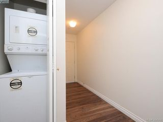 Photo 16: 105 1371 Hillside Avenue in VICTORIA: Vi Oaklands Condo Apartment for sale (Victoria)  : MLS®# 394269
