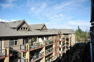 """Main Photo: 558 8258 207A Street in Langley: Willoughby Heights Condo for sale in """"Yorkson Creek"""" : MLS®# R2281604"""