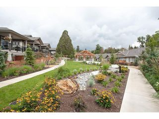 """Photo 19: 21 7138 210 Street in Langley: Willoughby Heights Townhouse for sale in """"Prestwick"""" : MLS®# R2307628"""