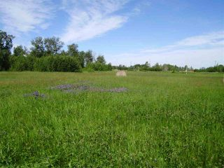 Photo 12: 53109 RGE RD 222: Rural Strathcona County Rural Land/Vacant Lot for sale : MLS®# E4133833