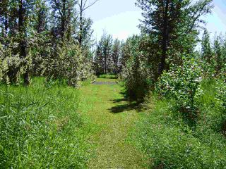 Photo 7: 53109 RGE RD 222: Rural Strathcona County Rural Land/Vacant Lot for sale : MLS®# E4133833