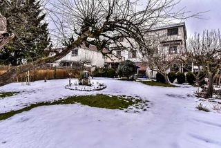 Photo 20: 7312 11TH Avenue in Burnaby: Edmonds BE House 1/2 Duplex for sale (Burnaby East)  : MLS®# R2345434