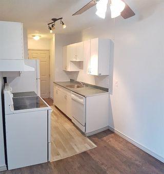 Photo 7: 207 9120 106 Avenue in Edmonton: Zone 13 Condo for sale : MLS®# E4152589