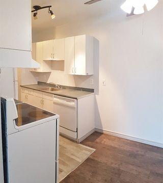 Photo 6: 207 9120 106 Avenue in Edmonton: Zone 13 Condo for sale : MLS®# E4152589