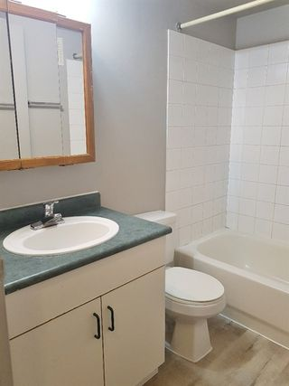 Photo 12: 207 9120 106 Avenue in Edmonton: Zone 13 Condo for sale : MLS®# E4152589