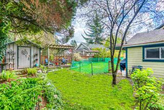 Photo 19: 20575 114 Avenue in Maple Ridge: Southwest Maple Ridge House for sale : MLS®# R2362039
