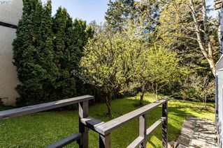 Photo 23: 685 Daffodil Avenue in VICTORIA: SW Marigold Single Family Detached for sale (Saanich West)  : MLS®# 410558