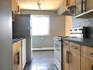 Photo 5: 304 10650 104 Street NW in Edmonton: Zone 08 Condo for sale : MLS®# E4159713