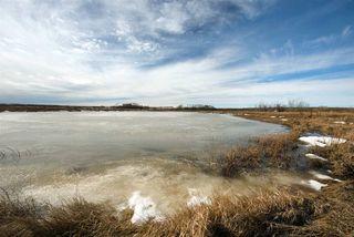 Photo 5: 45063A TWP RD 734 (KLESKUN ALL): Rural Grande Prairie County House for sale : MLS®# E4190073
