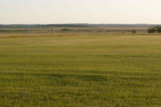 Photo 11: 45063A TWP RD 734 (KLESKUN ALL): Rural Grande Prairie County House for sale : MLS®# E4190073
