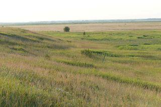 Photo 18: 45063A TWP RD 734 (KLESKUN ALL): Rural Grande Prairie County House for sale : MLS®# E4190073