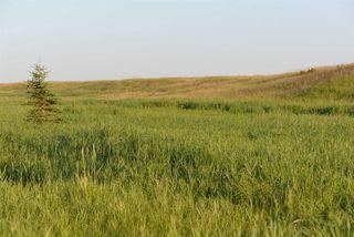 Photo 13: 45063A TWP RD 734 (KLESKUN ALL): Rural Grande Prairie County House for sale : MLS®# E4190073