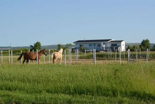 Photo 1: 45063A TWP RD 734 (KLESKUN ALL): Rural Grande Prairie County House for sale : MLS®# E4190073