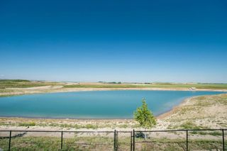 Photo 45: 37 Lucas Cove NW in Calgary: Livingston Detached for sale : MLS®# A1025548
