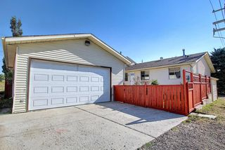 Photo 45: 19 TEMPLEBY Road NE in Calgary: Temple Detached for sale : MLS®# A1027919