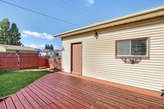 Photo 41: 19 TEMPLEBY Road NE in Calgary: Temple Detached for sale : MLS®# A1027919
