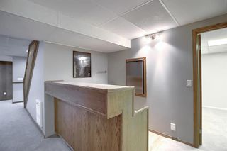 Photo 26: 19 TEMPLEBY Road NE in Calgary: Temple Detached for sale : MLS®# A1027919