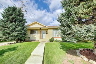 Photo 47: 19 TEMPLEBY Road NE in Calgary: Temple Detached for sale : MLS®# A1027919