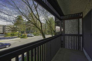 "Photo 14: 211 13501 96 Avenue in Surrey: Queen Mary Park Surrey Condo for sale in ""PARKWOODS"" : MLS®# R2495142"