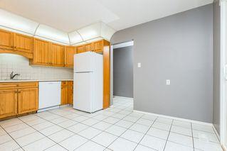 Photo 16: 8012 180 Street in Edmonton: Zone 20 House for sale : MLS®# E4224974