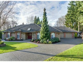 "Photo 1: 13059 21A Avenue in Surrey: Elgin Chantrell House for sale in ""HUNTINGTON PARK"" (South Surrey White Rock)  : MLS®# F1430270"