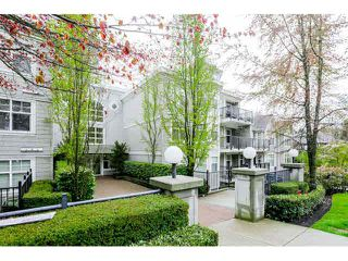 "Photo 20: 101 7038 21 ST Avenue in Burnaby: Highgate Townhouse for sale in ""ASHBURY"" (Burnaby South)  : MLS®# V1118752"