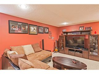 Photo 19: 301 2006 LUXSTONE Boulevard SW: Airdrie House  : MLS®# C4034048