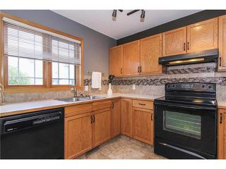 Photo 12: 124 INGLEWOOD Cove SE in Calgary: Inglewood House for sale : MLS®# C4046068