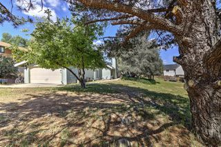 Photo 4: PINE VALLEY House for sale : 3 bedrooms : 7744 Paseo Al Monte