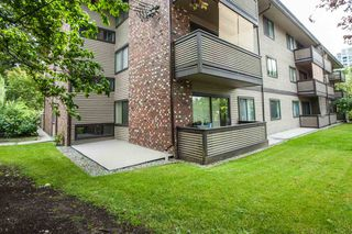 """Photo 15: 104 535 BLUE MOUNTAIN Street in Coquitlam: Central Coquitlam Condo for sale in """"REGAL COURT"""" : MLS®# R2081346"""