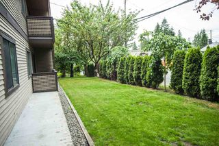 """Photo 16: 104 535 BLUE MOUNTAIN Street in Coquitlam: Central Coquitlam Condo for sale in """"REGAL COURT"""" : MLS®# R2081346"""