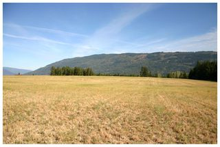 Photo 41: 4820 Northeast 30 Street in Salmon Arm: North Broadview House for sale (NE Salmon Arm)  : MLS®# 10143037