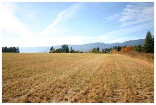 Photo 59: 4820 Northeast 30 Street in Salmon Arm: North Broadview House for sale (NE Salmon Arm)  : MLS®# 10143037