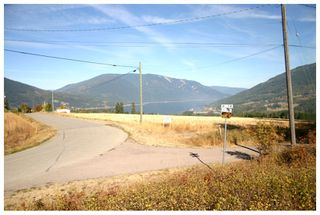 Photo 60: 4820 Northeast 30 Street in Salmon Arm: North Broadview House for sale (NE Salmon Arm)  : MLS®# 10143037