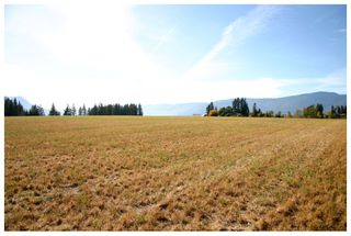 Photo 58: 4820 Northeast 30 Street in Salmon Arm: North Broadview House for sale (NE Salmon Arm)  : MLS®# 10143037