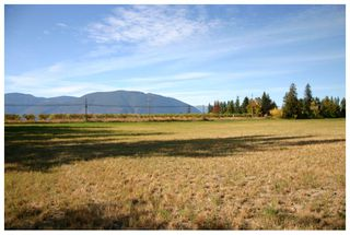Photo 50: 4820 Northeast 30 Street in Salmon Arm: North Broadview House for sale (NE Salmon Arm)  : MLS®# 10143037
