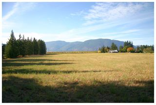 Photo 54: 4820 Northeast 30 Street in Salmon Arm: North Broadview House for sale (NE Salmon Arm)  : MLS®# 10143037