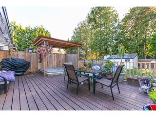 Photo 6: 2941 267B Street in Langley: Home for sale : MLS®# F1446771
