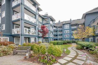 """Photo 17: 118 12931 RAILWAY Avenue in Richmond: Steveston South Condo for sale in """"BRITANNIA"""" : MLS®# R2219622"""