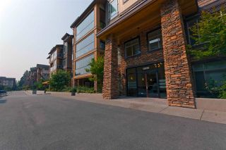 "Main Photo: 306 12635 190A Street in Pitt Meadows: Mid Meadows Condo for sale in ""CEDAR DOWNS"" : MLS®# R2297986"