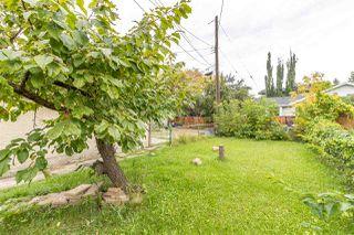 Photo 25: 10904 63 Avenue NW in Edmonton: Zone 15 House for sale : MLS®# E4139963