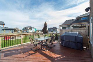 Photo 26: 16607 9 Street NE in Edmonton: Zone 51 House for sale : MLS®# E4143518