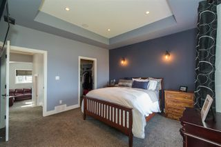 Photo 17: 16607 9 Street NE in Edmonton: Zone 51 House for sale : MLS®# E4143518