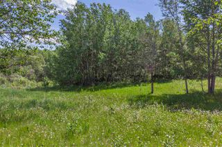 Main Photo: 52077 RGE RD 224: Rural Strathcona County House for sale : MLS®# E4148279