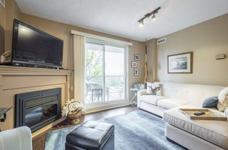 Photo 13: 203 10649 SASKATCHEWAN Drive in Edmonton: Zone 15 Condo for sale : MLS®# E4148607