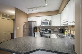 Photo 9: 203 10649 SASKATCHEWAN Drive in Edmonton: Zone 15 Condo for sale : MLS®# E4148607
